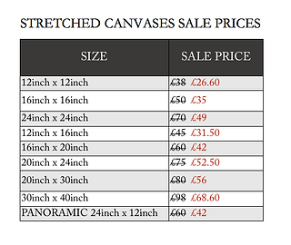 canvas sale prices.png