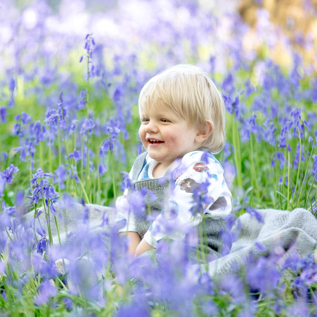 H Bluebells-9157 canvas.jpg