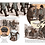 Thumbnail: Мелано Оливье / На двух колесах. История велосипеда (илл. Мелано Оливье)