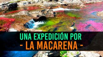 La biodiversidad que existe en La Macarena
