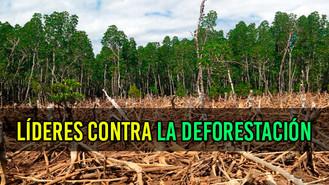 Líderes de Vista Hermosa se capacitan para frenar la deforestación