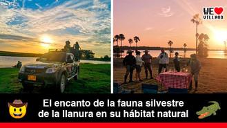 El Safari Llanero cautiva a los extranjeros con paisajes y animales de la región