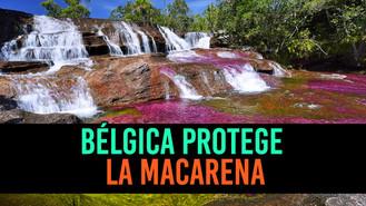 La campaña en Redes Sociales que busca proteger La Macarena
