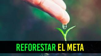 Anuncian ambicioso plan para reforestación en el Meta