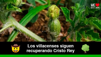 Nace la primera sandía del bosque frutal de Cristo Rey