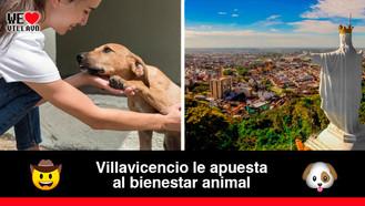 Con la adición presupuestal se avanzará con los estudios y diseños del Centro de Bienestar Animal