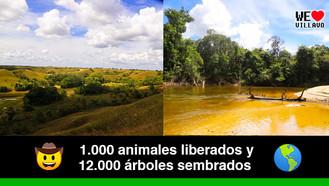 Yurumí, la Reserva Natural del Meta, ejemplo de conservación en Colombia