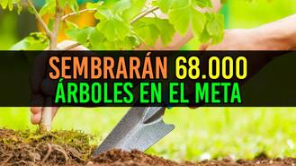 Secretaría de Ambiente anuncia la siembra de 68.000 árboles para el 2018