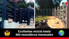 Emprendimiento llanero, construye corral de ganado con neumáticos reciclados