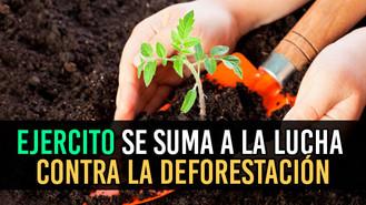 Miembros del ejército nacional serán capacitados para luchar contra la deforestación en el Meta