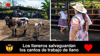 Así se vivió el Encuentro Cantos de Trabajo de Llano 2021 en San Martín