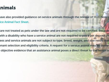 Service Animals:
