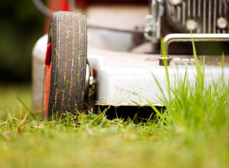 5 Lawn Care Tips for Summer and Beyond