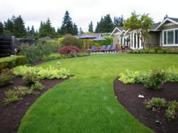 collins backyard.JPG
