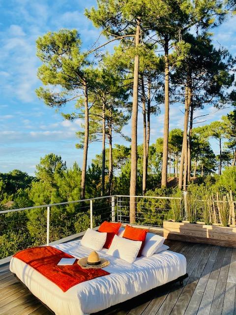 Coucher de soleil sur la canopée