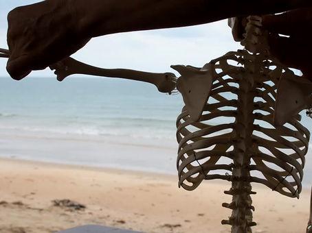骨格模型撮影のメイキング