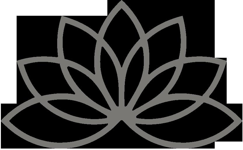 Pale lotus flower