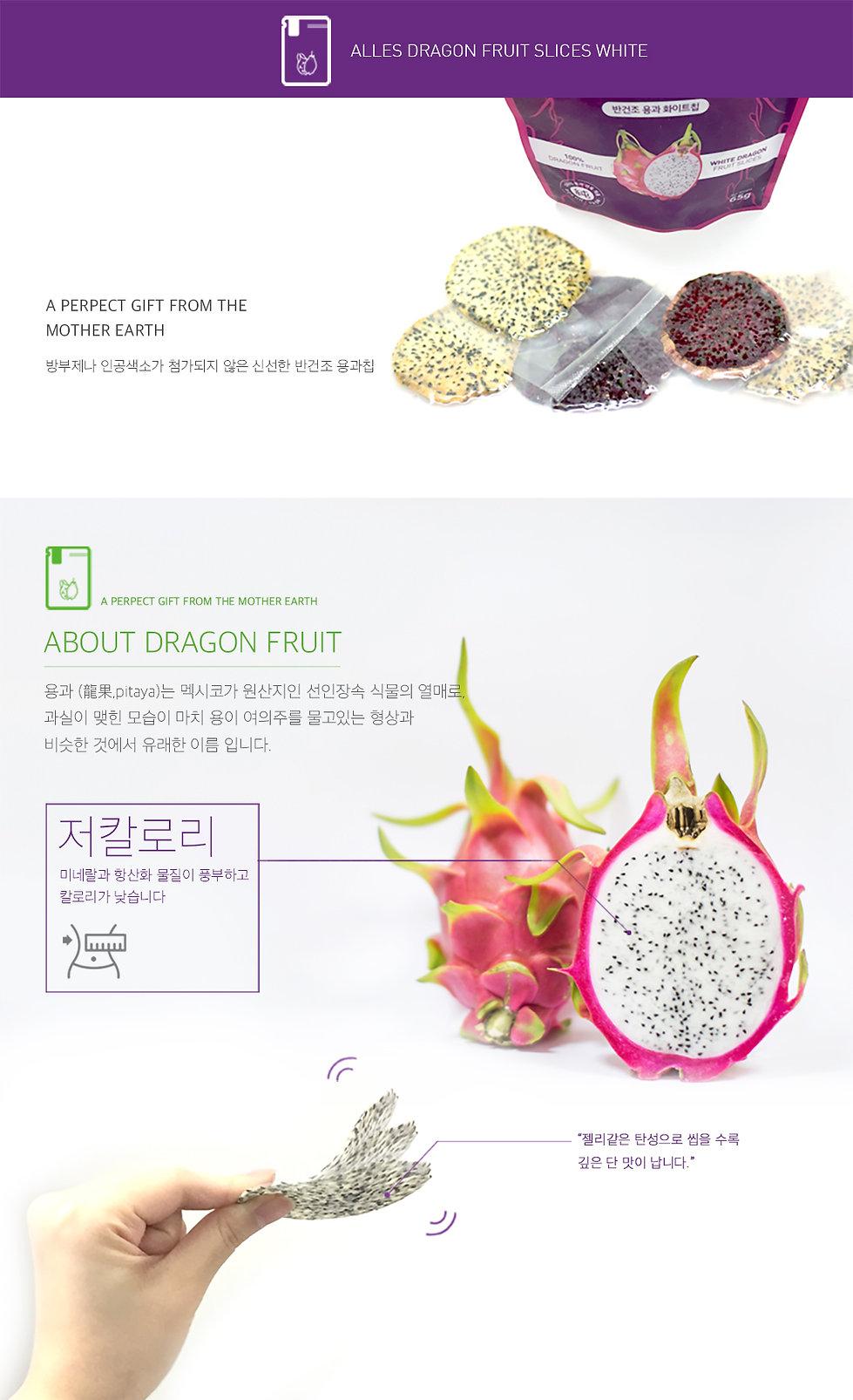 용과화이트칩소개2