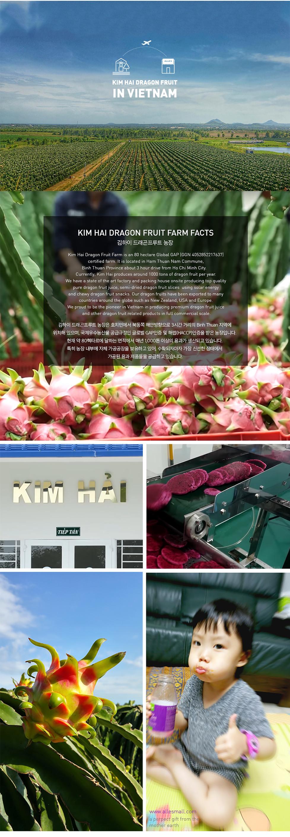 용과화이트칩소개5