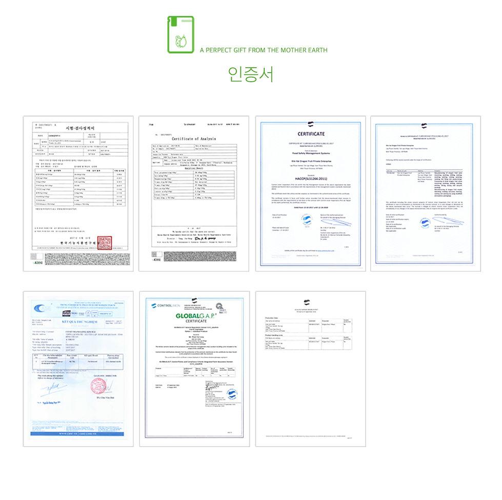 용과화이트칩소개6