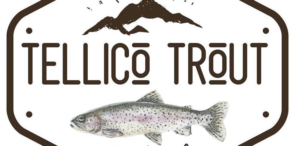 Tellico Trout Festival