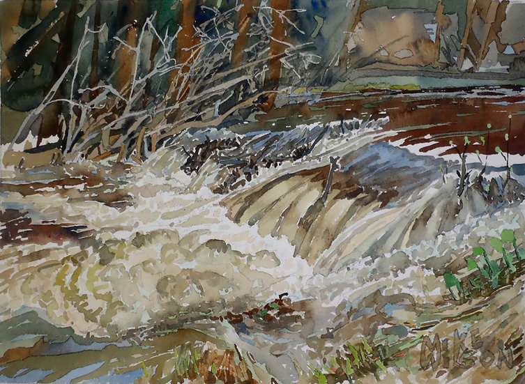 FRASER RIVER FLOODS