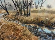 12x16#68 coal creek.jpg