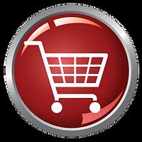 company e-store building services