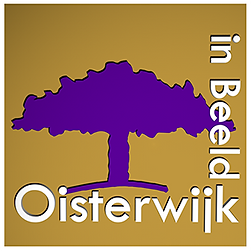 Logo-Oisterwijk-in-Beeld-small.png