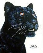 animals09-Cat_BlakPanther-G.jpg