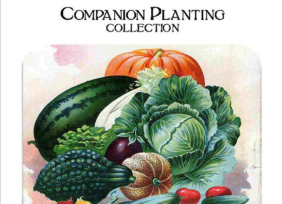 Companion Planting Collection