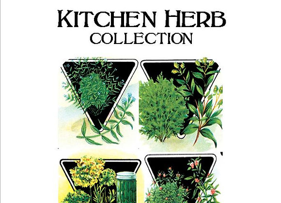 Kitchen Herb Collection
