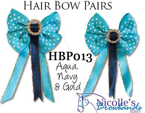 HBP013
