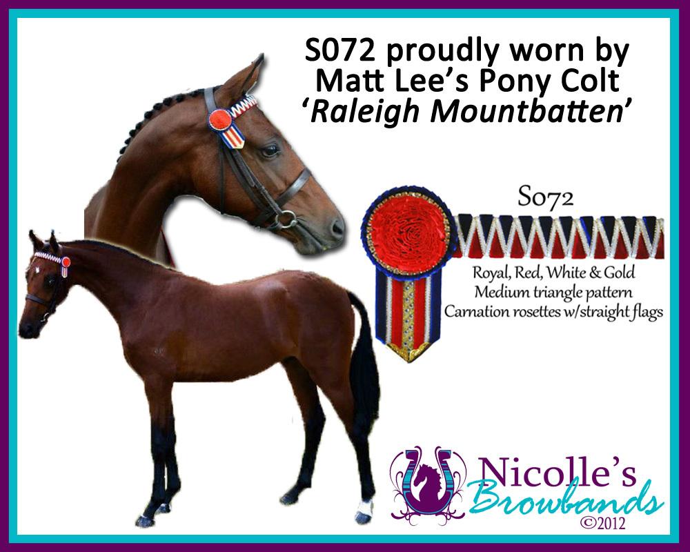Raleigh+Mountbatten
