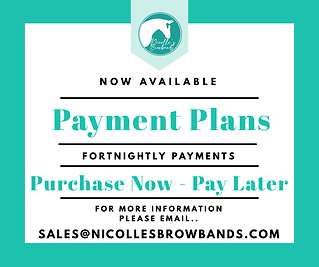 Payment Plans.PNG