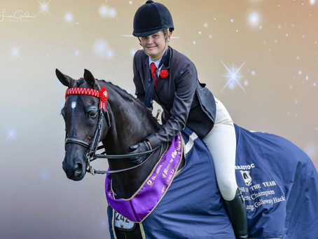 2019 Barastoc Horse of the Year Show