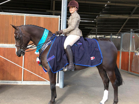 WNSE Show Horse Championships