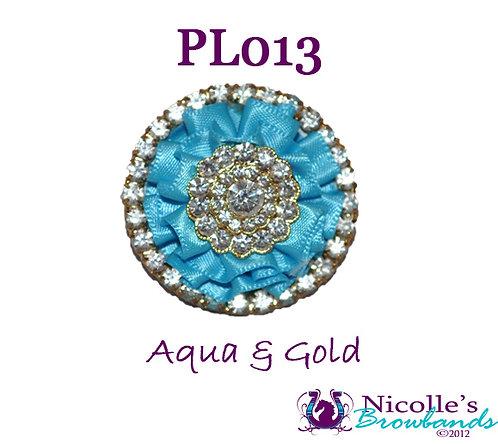 PL013