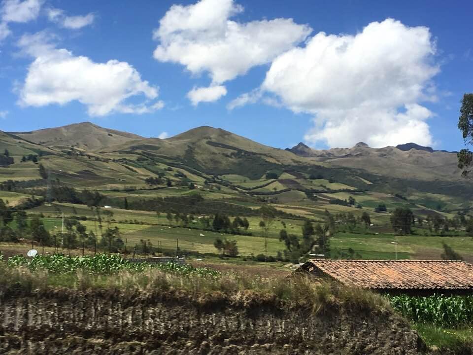 Volunteer in Ecuador   AMPED Abroad