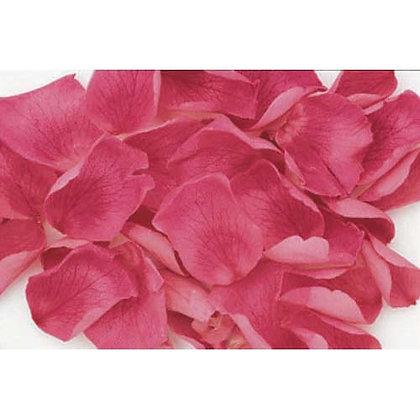 FL019-08 Rose Petals