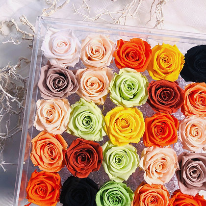 - UN-0223 Twelve-five Roses in an Acrylic Box (Rainbow)