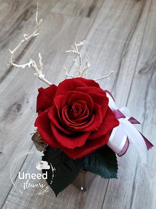 UN-0193-10 Wine Red Premium Rose Arrangement