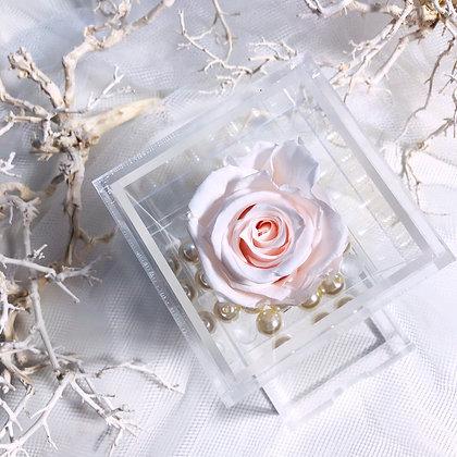 UN-0195 Single Rose in Mini Acrylic Box (Rainbow)