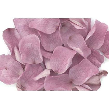 FL019-14 Rose Petals