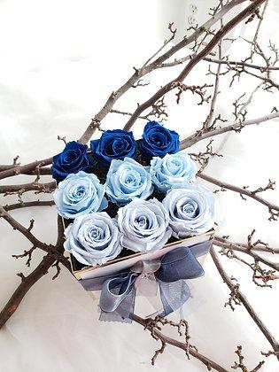 UN-0093 Majolica Blue Preserved Roses in a Box