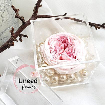 UN-0200 Rose Temari Blossom in Mini Acrylic Box w/ Drawer