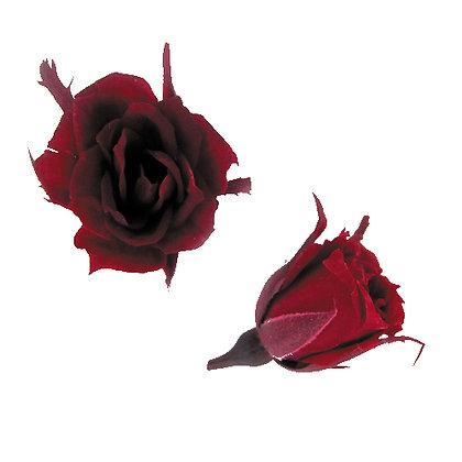 FL060-10 Micro Rose