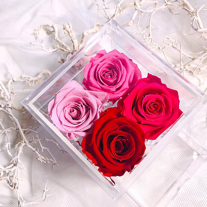 UN-0197 Four Roses in an Acrylic Box (Red & Pink)