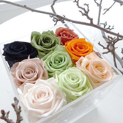 UN-0217 Nine Roses in an Acrylic Box (Rainbow)