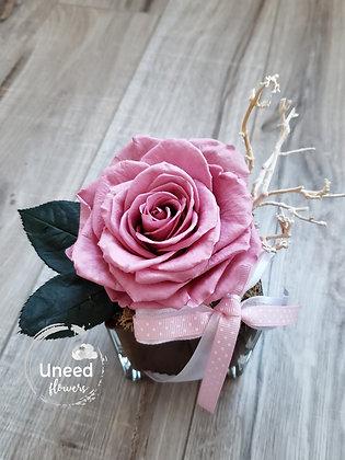 UN-0193-20 Cherry Blossom Premium Rose Arrangement